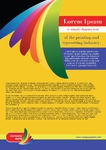 Rainbow-2, Flyer